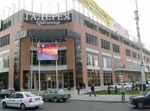 Какой бизнес открыть в Краснодаре