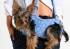 сумки переноски для маленьких собак своими руками