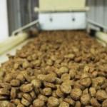 производство корма для кошек и собак