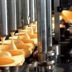 производство майонеза