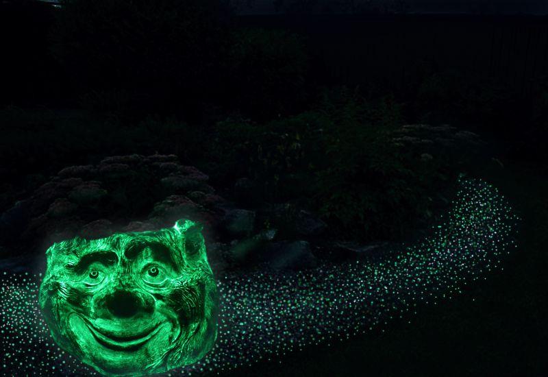 пенек и волшебная тропинка ночь